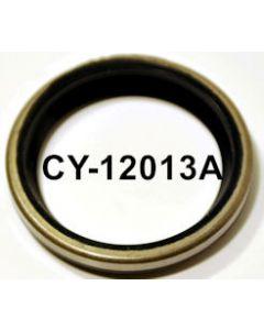 CY12013A
