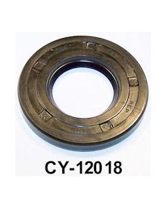 CY12018