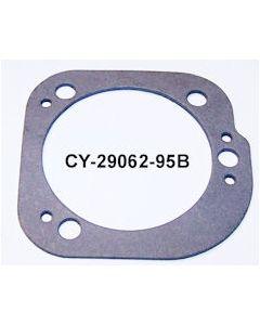 CY29062-95B