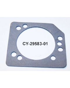 CY29583-01
