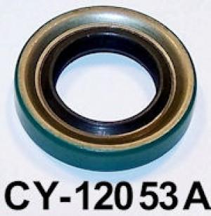 CY12053A