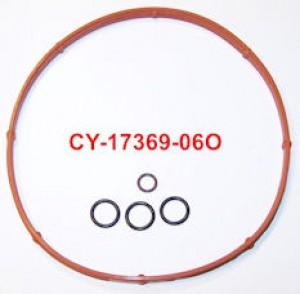 CY17369-06KIT