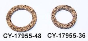 CY17955-48