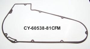 CY60538-81CFM