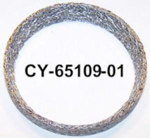 CY65109-01