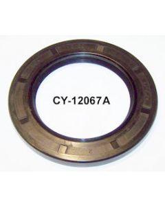 CY12067AP