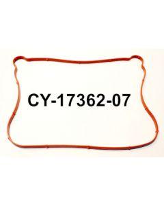 CY17362-07
