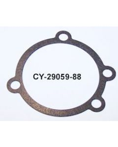 CY2905988 10 Pack
