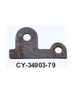 CY3490379IF