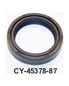 CY45378-87