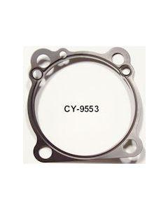 CY9553 (Singles)