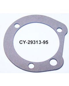 CY29313-95