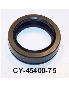 CY45400-75